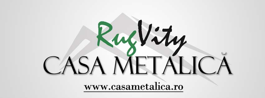 Case structura metalica